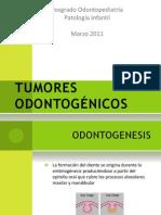 TUMORES ODONTOGENICOsS