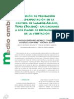 Sucesión de vegetación post-explotación en la cantera de Lafarge-Asland, Yepes (Toledo)