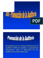 20195239 300 Planeacion de Auditoria[1]