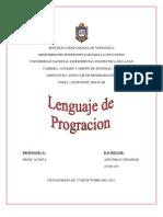 Zz Lenguaje Programacion