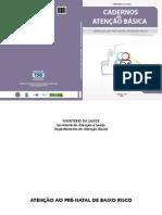 100833982-Manual-Pre-natal-2012