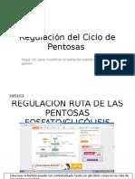 Regulación del Ciclo de Pentosas