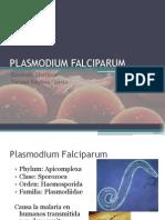 PLASMODIUM-FALCIPARUM