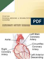 Coronary Artery Disease Ahmet Ipek Ahmet Demirel