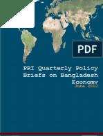 Final PRI Policy Briefs July 2012