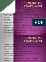 Mod 2 - Marketing Env