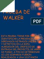 Prueba de Walker