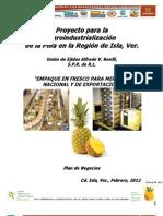 Plan Negocios Empaque y Camara Refrig Final 08 Feb 2012, Final