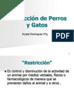 PROFA. K. DOMINGUEZ AVET 110 11. Restriccion de Perros y Gatos