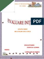 Evaluare Initiala Grupa Mare