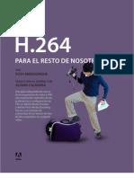 h264 Primer Es