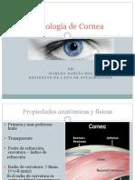 Cornea Fisiologia