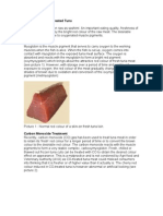 Carbon Monoxide Treated Tuna 6