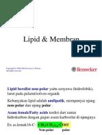 3. Lipid Dan Membran