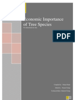 Economic Importance of Popular Tree Species