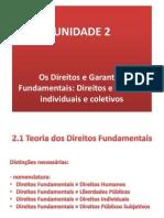 Slide_teoria Dos Direitos Fundamentais