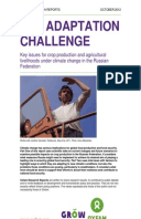 The Adaptation Challenge: Key issues for crop production and agricultural livelihoods under climate change in the Russian Federation