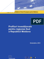 Profiluri investiţionale pentru regiunea Sud a Republicii Moldova