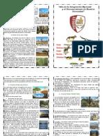 diptico ecosistema
