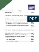eBook Economia Subterana in Romania Si Pe Plan International