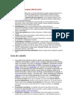 Las principales propiedades UÑA DE GATO