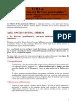 TEMA 4. Organización del Relieve Peninsular - Notas de Apoyo