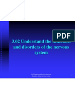 3 02 understand the functions and disorders of the nervous system