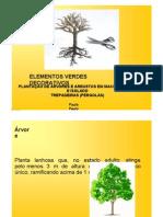 Harri Lorenzi Arvores Brasileiras Pdf