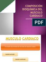Composición  bioquímica del musculo  cardiaco