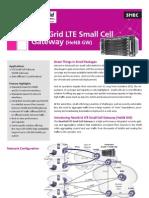 (DS) HeNB Gateway Solution.pdf
