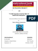 Summer Training Project
