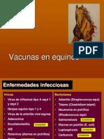 Vacunas en Equinos