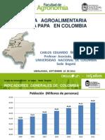 La cadena de la papa en Colombia