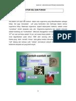 Topik 3 Struktur Sel Dan Fungsi 3101