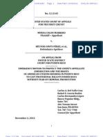 electionslitigation.appealsprotectiveorder