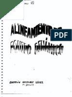 Manual Alineacion