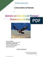 1 relatorio de area do projecto - André Fernandes nº6