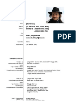 CV Matteo Bini