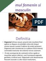 Orgasmul Femenin Si Masculin