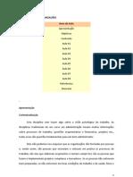 AULAS de PSICOLOGIA NAS ORGANIZAÇÕES (word)