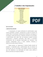 AULAS de SOCIOLOGIA DO TRABALHO e das ORGANIZAÇÕES (word)