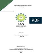 Laporan Praktikum Biosistematika Hewan_Arthropoda