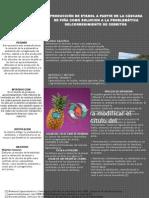 (poster)PRODUCCIÓN DE ETANOL A PARTIR DE LA CÁSCARA