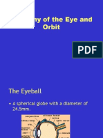 Anatomy of the Eye and Orbit