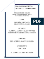 monografia-niños-especiales-canton-el-guabo(HNIETO)