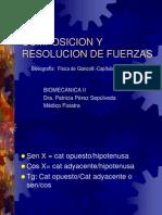 biomecanica 2