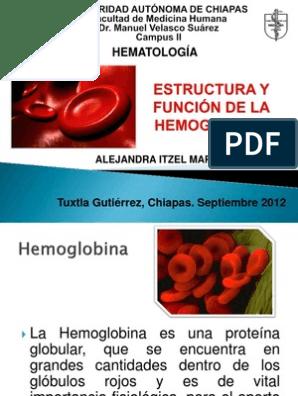 Estructura Y Función De La Hemoglobina Hemoglobina