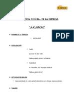 Descripcion General y Antecedentes de La Empresa.