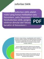 Fosforilasi Siklik
