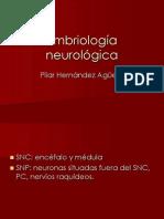 Embriología neurológica 1